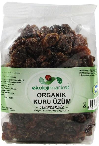 Ekoloji Market Organik Çekirdeksiz Kuru Üzüm (Sarı) 200 gr