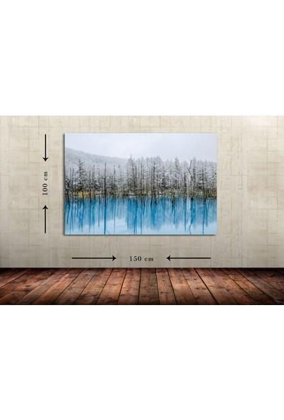 Dementia Art Manzara Dev Boyut Kanvas Tablo 8571