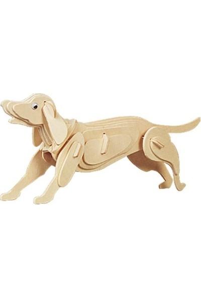 Pi İthalat 3D Ahşap Puzzle - Köpek