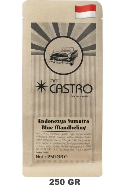 Castro Endonezya Sumatra Blue Mandheling Nitelikli Çekirdek Kahve 250 gr