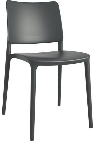 Papatya Joy Sandalye Gri