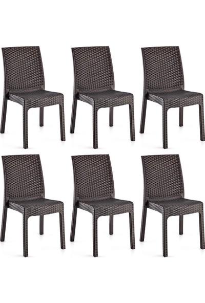 Holiday Deluxe Kolsuz Rattan Koltuk Sandalye 6 Adet Kahverengi H641