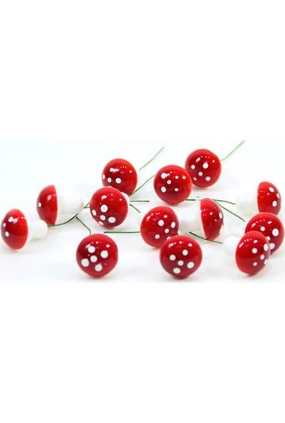 Can Kırmızı 10lu Köpük Mantar Teraryum Bahçe Saksı Süsü ( Çap 3 cm )