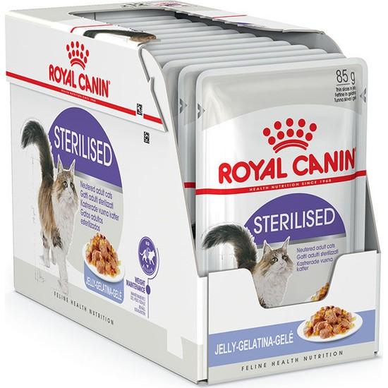 Royal Canin Jelly Sterilised Kısırlaştırılmış Yaş Kedi Maması 85 Gr x 12