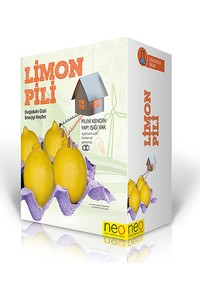 Neo-Toys Lemon Battery Kids Toy