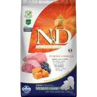 N&D Pumpkin Tahılsız Bal Kabaklı, Kuzu Etli Ve Yaban Mersinli Orta Ve Büyük Irk Yavru Köpek Maması 2.5Kg