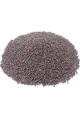 Dağcıoğlu Siyah Hardal Tohumu 500 gr