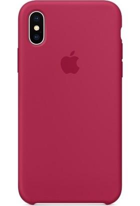 Graytiger Apple iPhone X Bordo Silikon Kılıf Kauçuk Arka Kapak