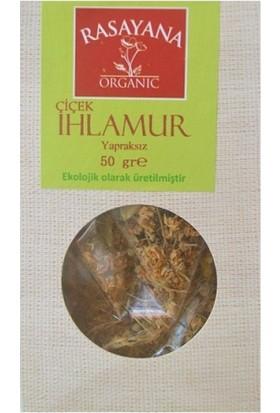 Rasayana Organik ıhlamur Çiçek, Yapraksız 50 gr
