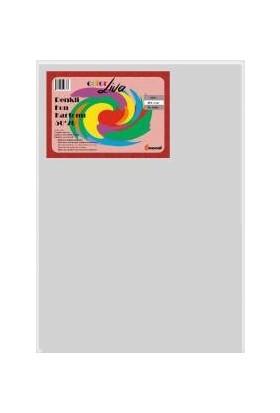 Color Liva Mondi Fon Kartonu Gri 50X70 100'lü Paket