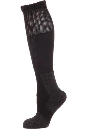 Panthzer Nature Extreme Cold Socks Erkek Çorap Siyah