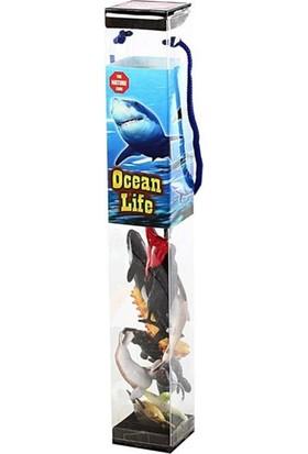 Bircan Oyuncak Deniz Hayvanları