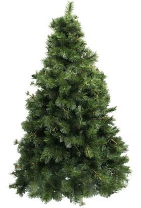 Evistro Yılbaşı Çam Ağacı 240 cm