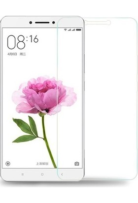 Notech Xiaomi Mi Max 2 Cam Ekran Koruyucu