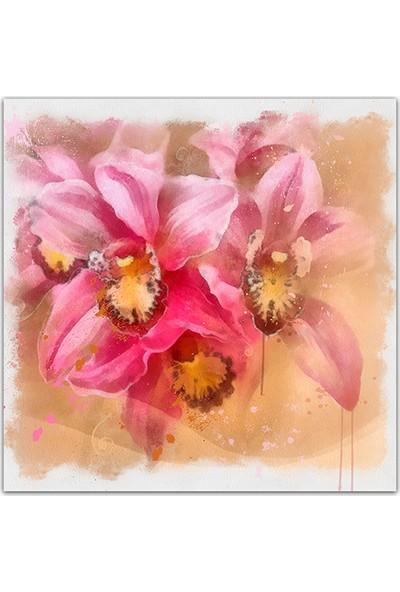 Decobritish Pembe Çiçekler Dekoratif Kanvas Tablo