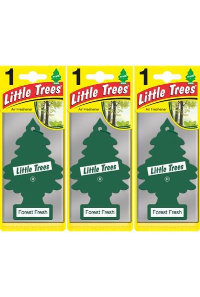 Little Trees Kağıt Koku Forest Fresh Orman Tazeliği 3'lü Paket