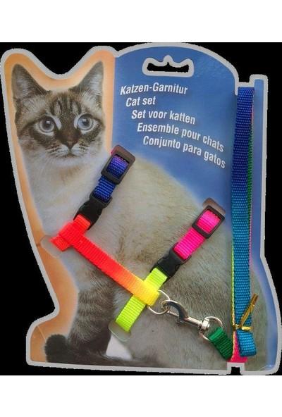 Dr. Sacchi Ab101-10 Kedi Göğ.Tas.Ve Gez. Seti