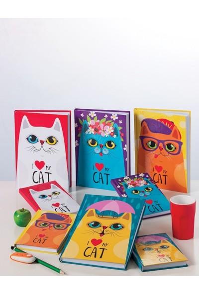Bayındır New Cat Serisi 120 Yaprak Düz 14X20