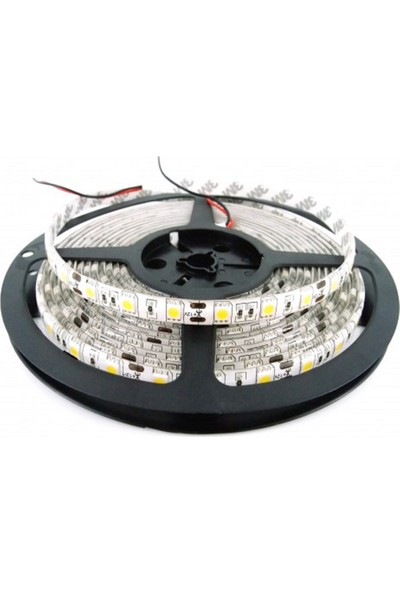 Lamptime Üççıp 60 Led Dış Ortam Gunışığı Serıt Led 5 Mt. Lamptıme