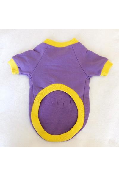 Kemique Purple Car Kedi Süeteri Kedi Kıyafeti Araba Desenli