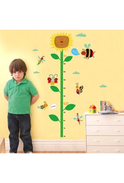 Crystal Kids Boy ve Gelişim Ölçen Ayçiçeği Çocuk Odası Dekoru Duvar Sticker