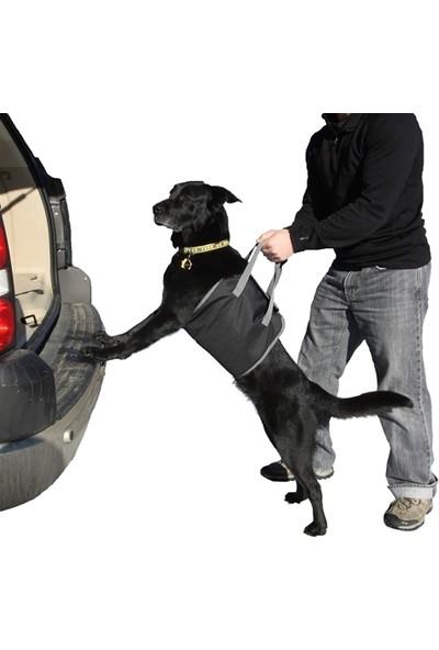 ModaCar Araç Arkası Köpek Koyma Aparatı 424691