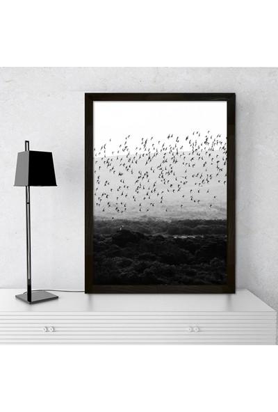 Vetro Design Kuşlar Ahşap Çerçeveli Poster