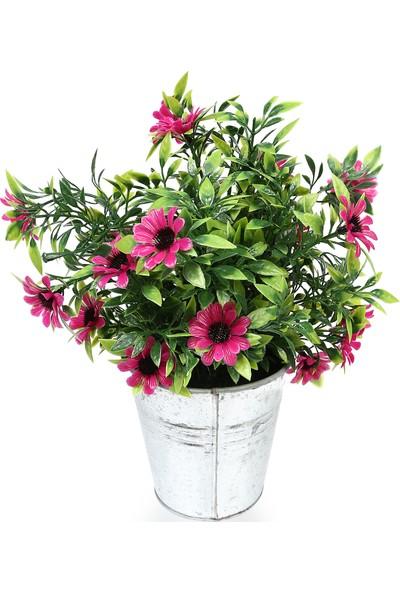 Koopman Yapay Bitki Çiçek Pembe 10X10X25 Cm