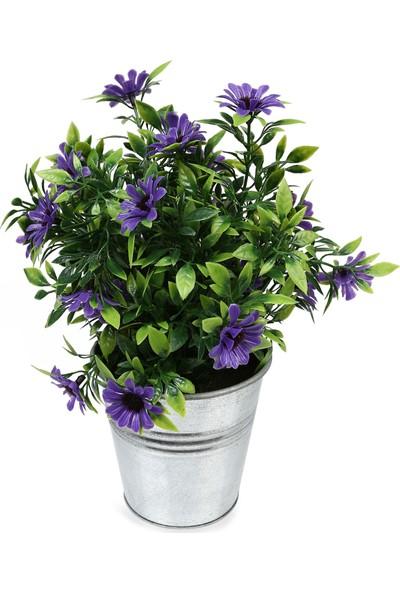 Koopman Yapay Bitki Çiçek Mor 10X10X25 Cm