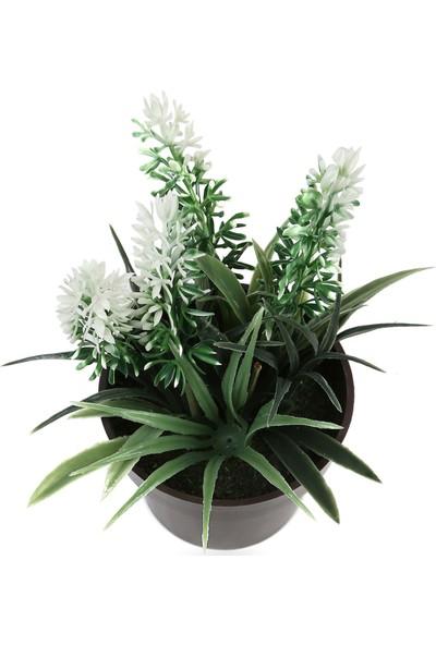 Koopman Yapay Bitki Çiçek Beyaz 8X15Cm