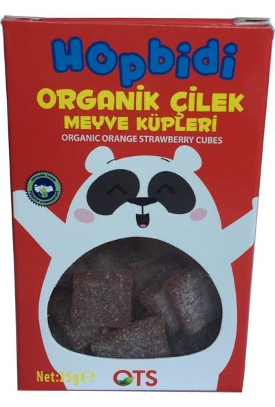 Ots Organik Hopbidi Meyve Küpleri Çilek 25 gr
