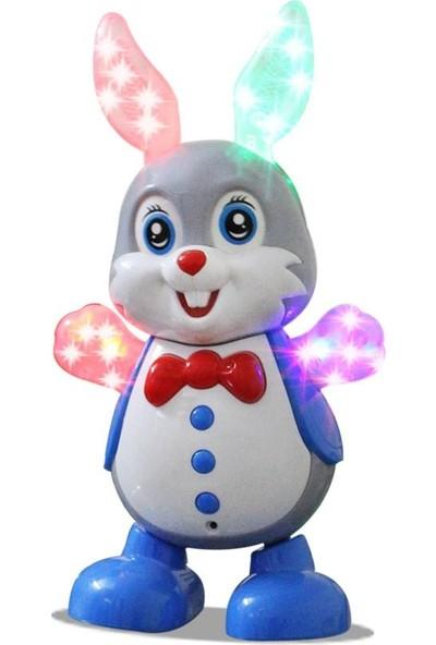 Can Oyuncak Dansçı Tavşan