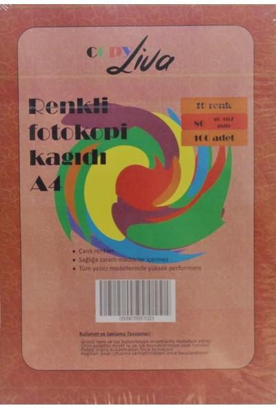 Copy Liva A4 10 Renk Karışık Fotokopi Kağıdı 80Gr 100 Sayfa