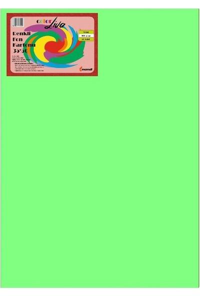 Color Liva Mondi Fon Kartonu Yeşil 35X50 50'Li Paket
