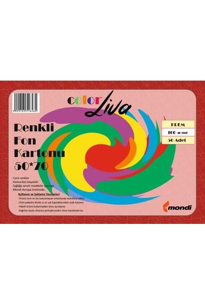 Color Liva Mondi Fon Kartonu Krem 50X70 100'lü Paket