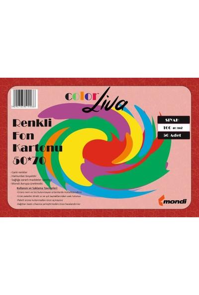 Color Liva Mondi Fon Kartonu Siyah 50X70 100'lü Paket