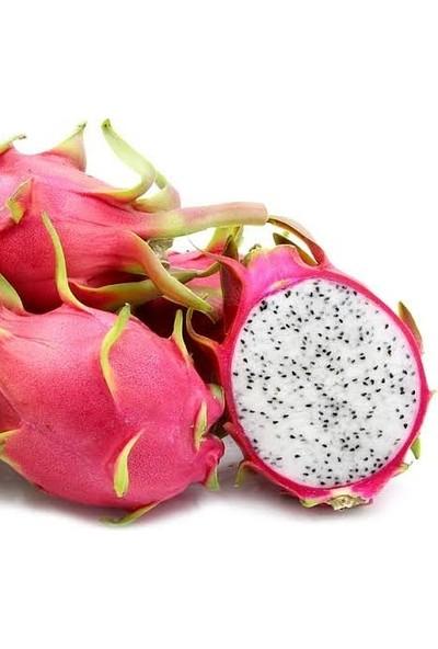 Berke Fidancılık Beyaz Pitaya (Ejder Meyvesi) Köklü Ve 100-130 Cm (Meyve Verecek Yaşta)