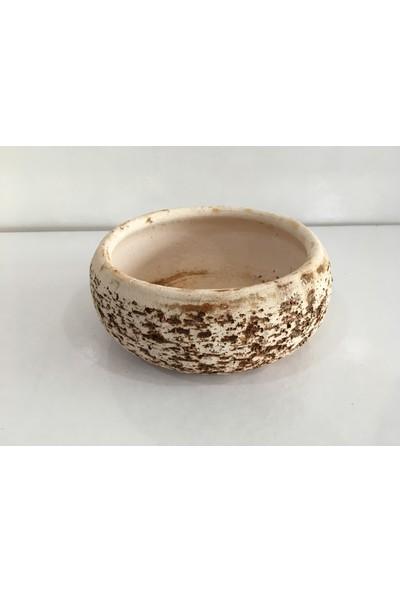 Armen Antik Görünümlü Bonsai Ve Teraryum Saksısı