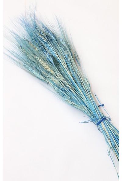 Yapay Çiçek Evim Kuru Başak Buketi Çoklu Mavi