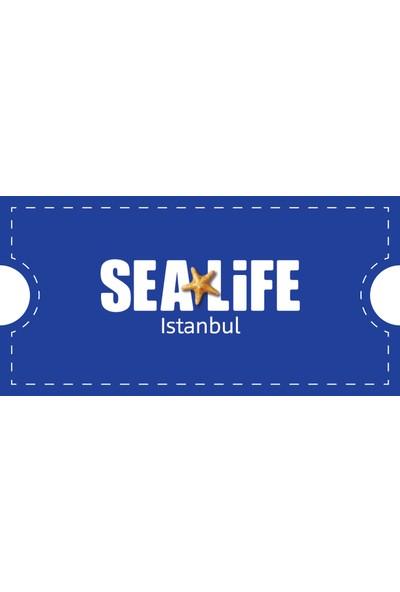 Sealife İstanbul Çocuk Giriş Bileti 3-14 Yaş (Haftanın Her Günü Geçerli)