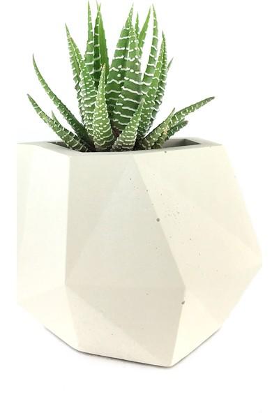 Betonish Trapezium Model Beton Saksı