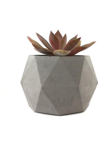 Betonish Octagon Model Beton Saksı