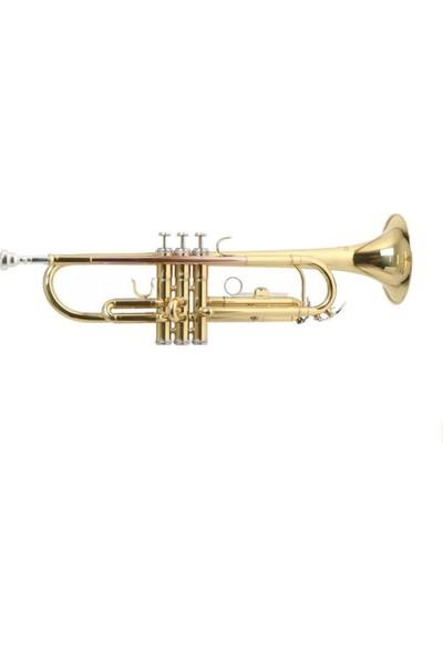 Roy Benson Tr-101 Trompet