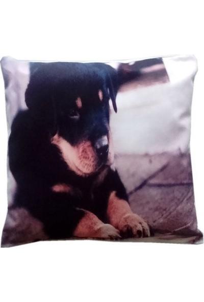 Lintex Sevimli Köpek Dijital Baskılı Kırlent