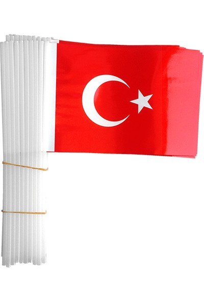 PartiniSeç 100 Adet Çubuklu Türk Bayrağı 23 Nisan 19 Mayıs 30 Ağustos Okul
