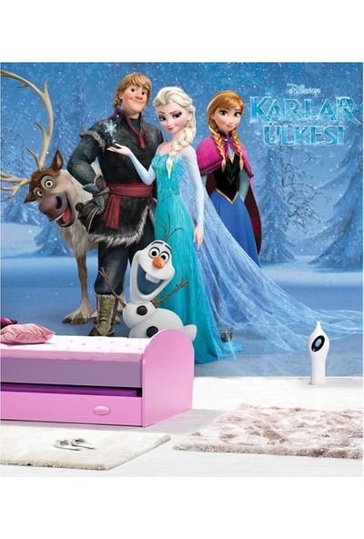 Disney Frozen 178 x 126 Cm Duvar Resmi