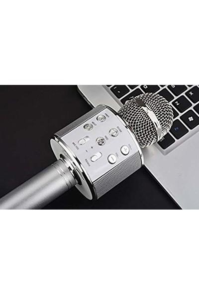 Tigdes WS-858 Profesyonel Ses Kaydı Yapabilen Karaoke Mikrofon WS858 Silver