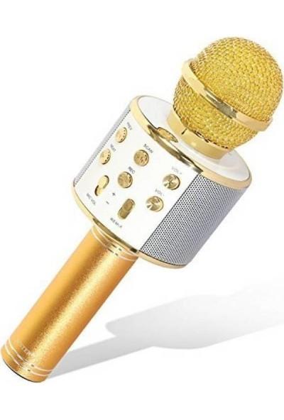 Tigdes WS-858 Profesyonel Ses Kaydı Yapabilen Karaoke Mikrofon WS858 Gold