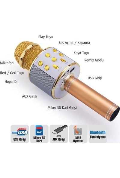 Goldmaster Star 2018 Karaoke Altın Sarısı Mikrofon