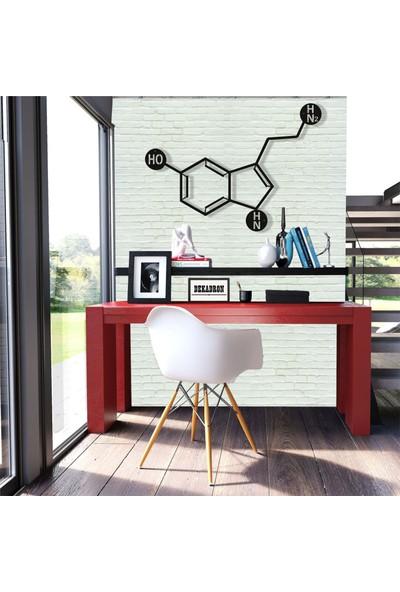 Dekadron Molekül Serotonin Metal Tablo